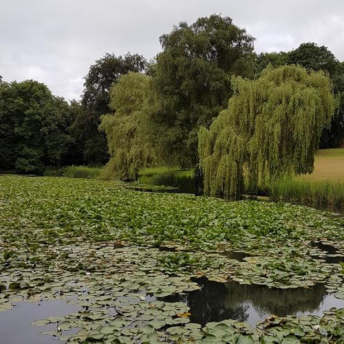 Wroxton 2017 - 34